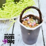 S'mores Pudding Cup Easter Baskets