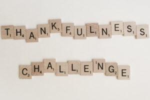 november-thankfulness-challenge-north-phoenix-moms-blog-malia-b-photography-copy