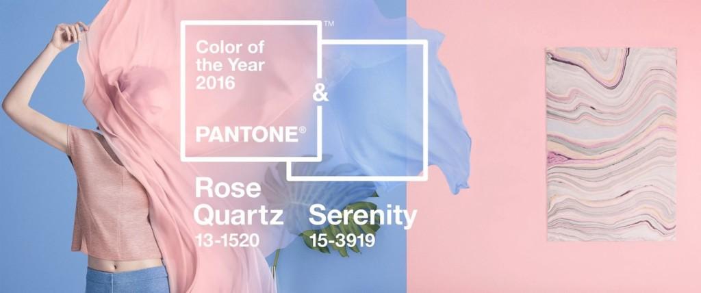 pantone color wide image