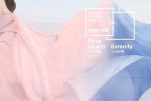 pantone color feature image