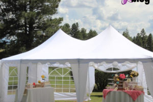 North-Phoenix-Moms-Blog-Royalty-Rentals copy