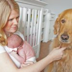 Puppy Love: Introducing Your Fur Baby To Your New Baby