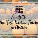 2016 Guide to the Best Pumpkin Patches in Arizona