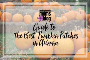 the-best-pumpkin-patches-in-arizona
