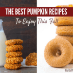 The Best Pumpkin Recipes To Enjoy This Fall