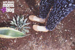 Succulent-768x512 copy
