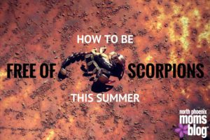 Staying Scorpion Free This Summer