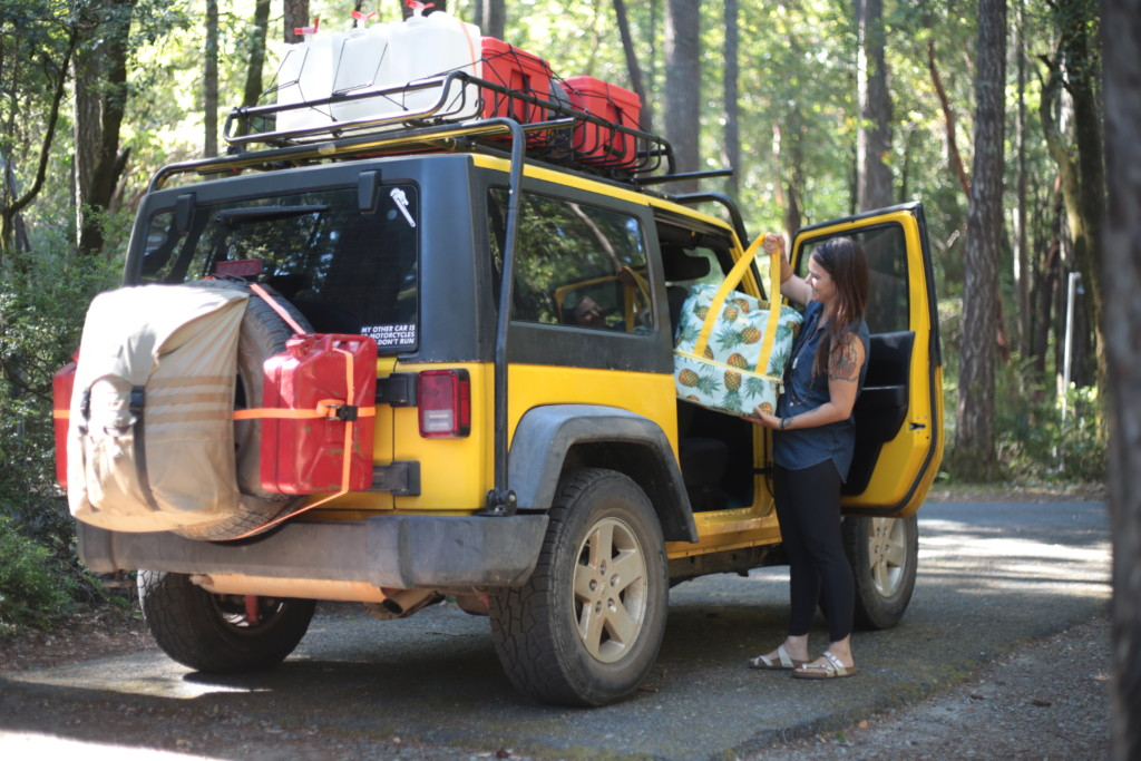 Survive a Road Trip With Kids and a Dog