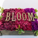 Bloom {Why You Won't Want to Miss Next Year!}