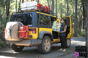 Survive Road Trip with Kids and a Dog