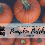 2017 Guide to the Best Pumpkin Patches in Arizona