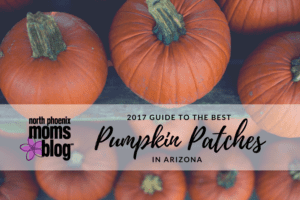 2017 Guide to the Best Pumpkin Patches in Arizona-2