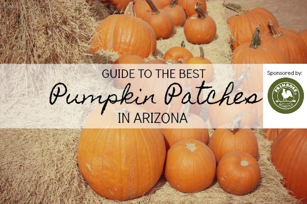 pumpkin patches in arizona