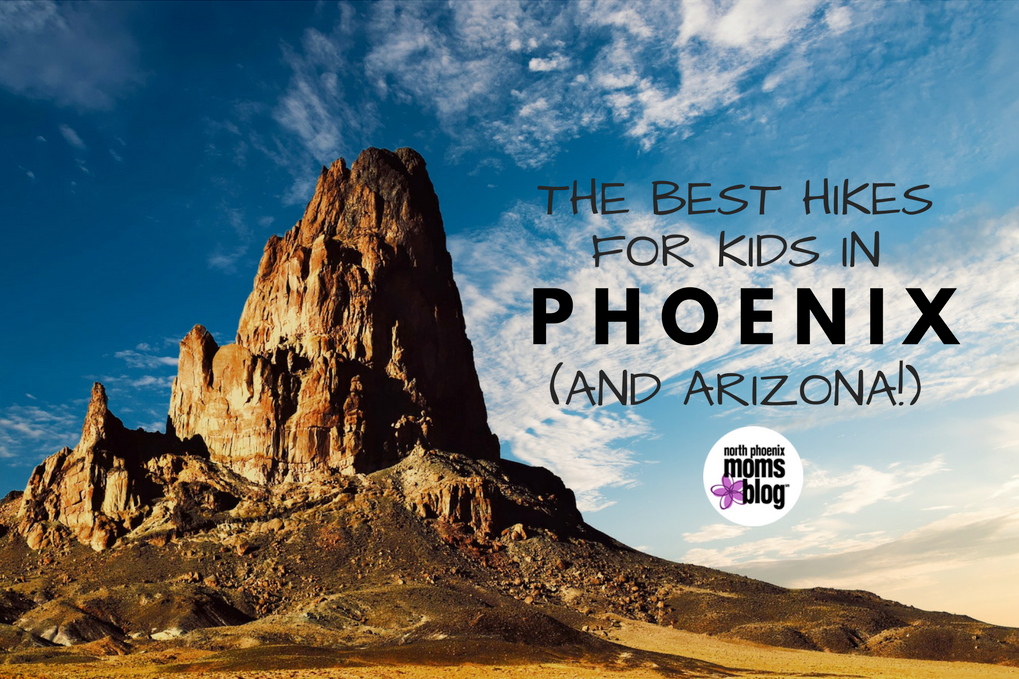 Best Hikes for Kids in Phoenix