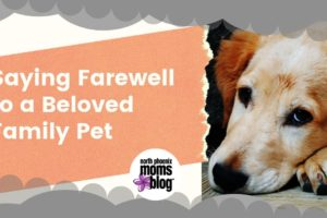 Saying Farewell to a Beloved Family Pet (1)