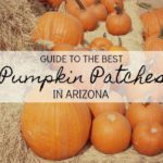2019 Guide to the Best Pumpkin Patches in Arizona