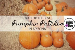 pumpkin-patches-2