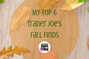 My Top 6 Trader Joes Fall Finds (3)