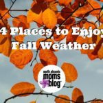 Top 4 Places to Enjoy the Fall Weather (without leaving the valley)